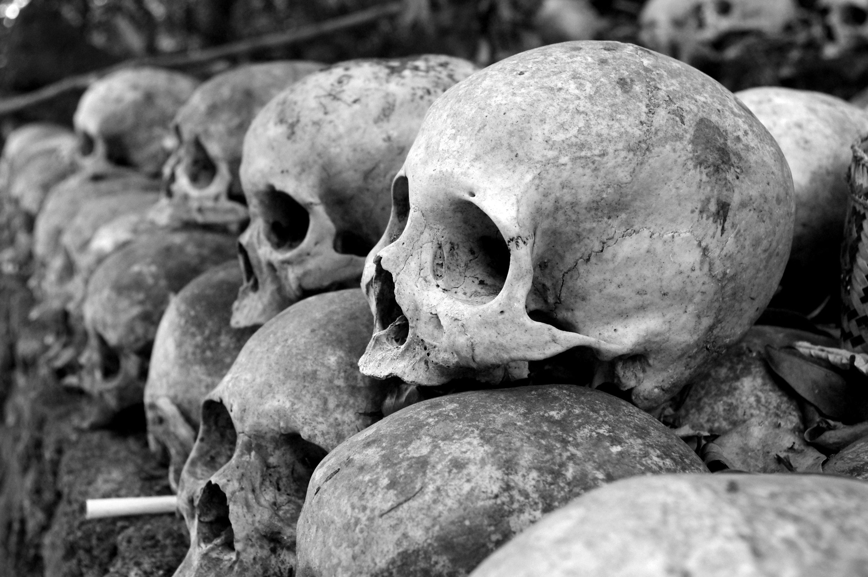 Piotr Skarga pochowany żywcem?