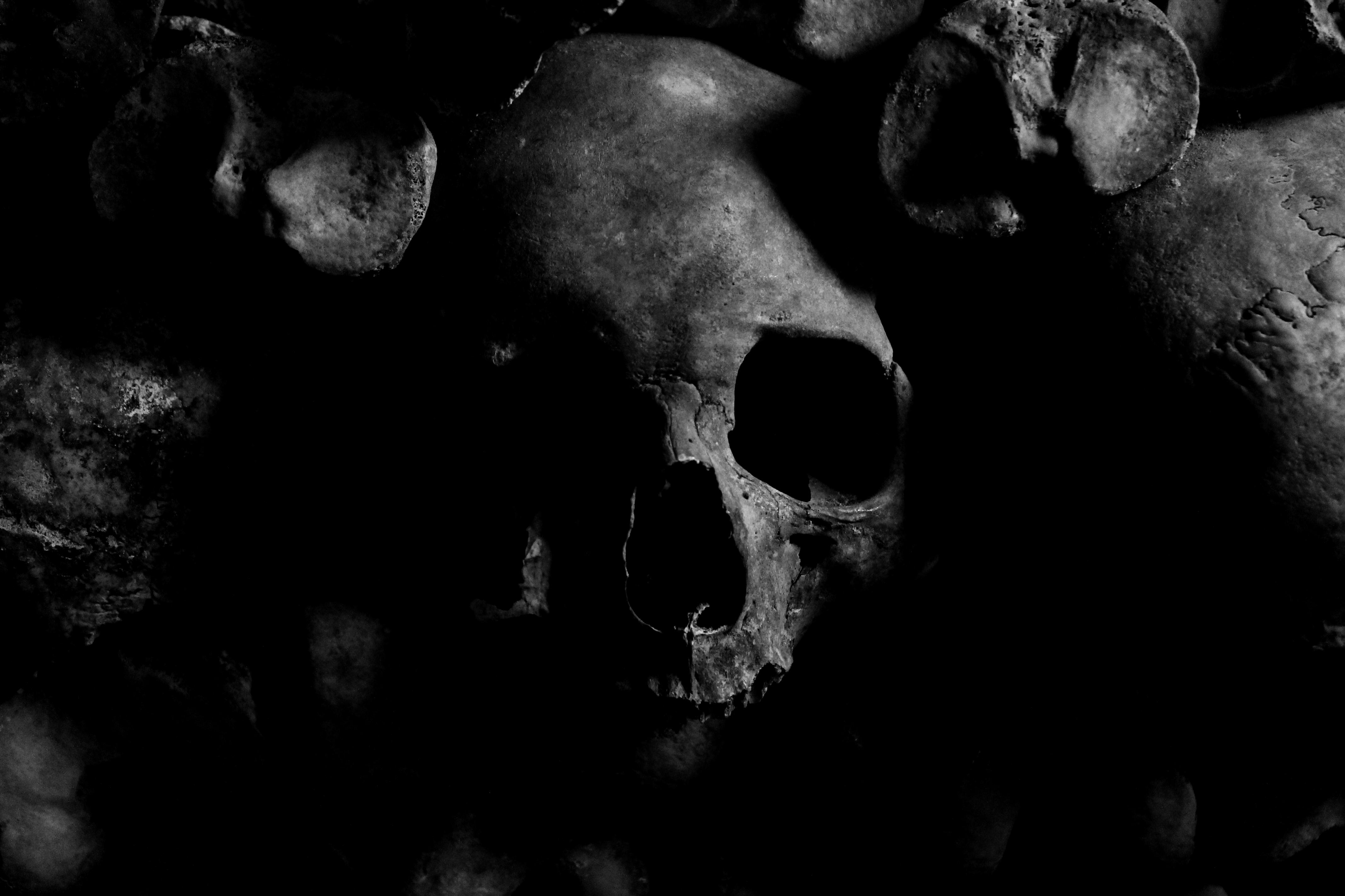 Dżuma – dlaczego nazywamy ją czarną śmiercią?